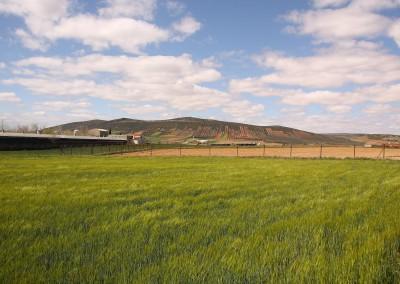 Casa Rural El Patas76
